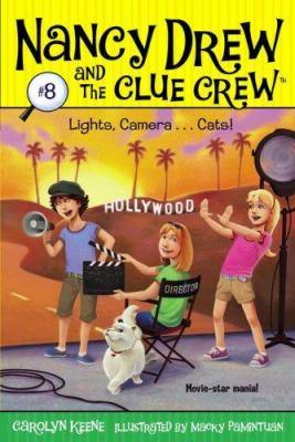 Lights, camera -- cats!