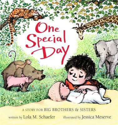 One special day : a story for big brothers & sisters