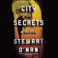 City of secrets : a novel