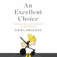 An excellent choice : panic and joy on my solo path to motherhood