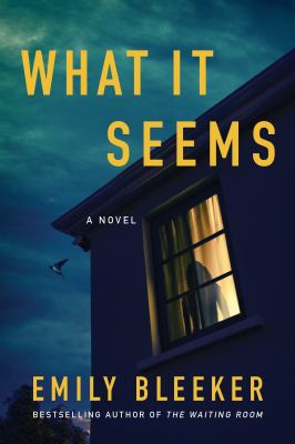 What it seems : a novel