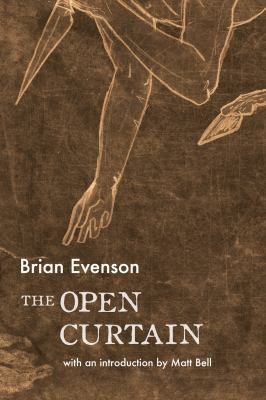 The open curtain : a novel
