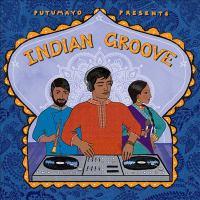 Putumayo presents Indian groove.
