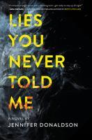 Lies you never told me : a novel