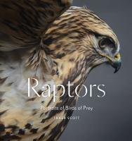 Raptors : portraits of birds of prey