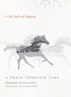 A train through time :
