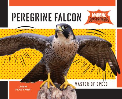 Peregrine falcon : master of speed