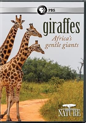 Giraffes : Africa's gentle giants