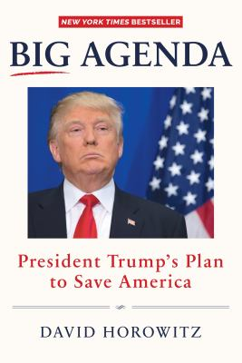 Big agenda : President Trump's plan to save America
