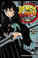 Demon slayer : kimetsu no yaiba. Volume 12, The upper ranks gather