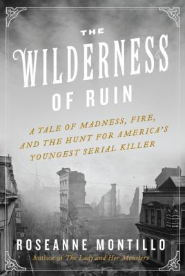 The wilderness of ruin: a tale of madness, Boston's Great Fire, and the hunt for America's youngest serial killer