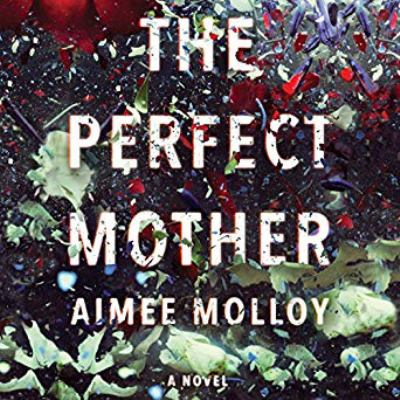 The perfect mother a novel
