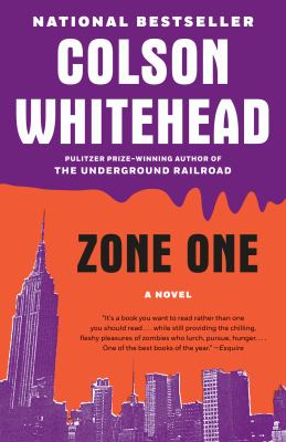 Zone one : a novel