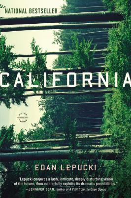 California A Novel