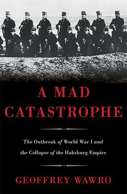 A mad catastrophe : the outbreak of World War I and the collapse of the Habsburg Empire