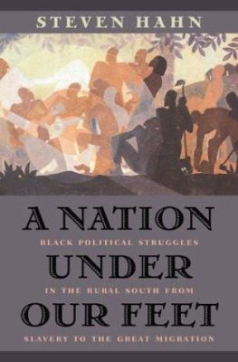 A nation under our feet: black political struggles in the rural South, from slavery to the great migration