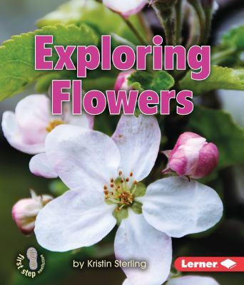 Exploring Flowers.