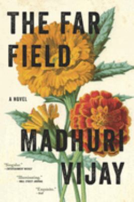 The far field : a novel