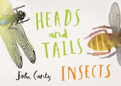 Cover Image for Heads and Tails: Insects