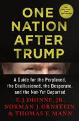 One nation after Trump : a guide for the perplexed, the disillusioned, the desperate, and the not-yet deported