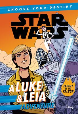 Book cover for Star Wars. A Luke & Leia adventure
