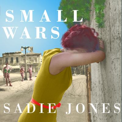 Small wars : a novel