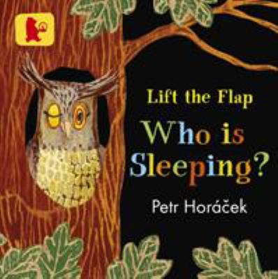 Cover Image for Who is sleeping?