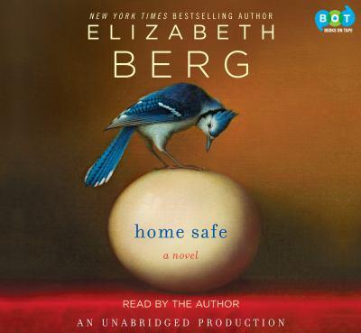 Home Safe a Novel