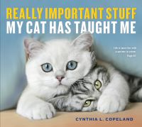 Really Important Stuff My Cat Has Taught Me.