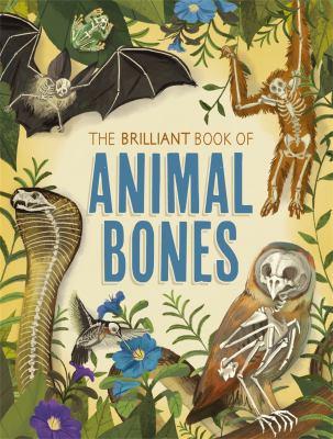 Book cover for The brilliant book of Animal Bones
