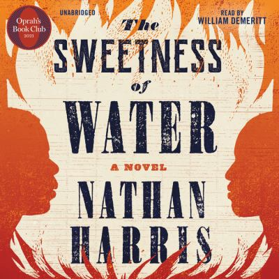 The sweetness of water a novel