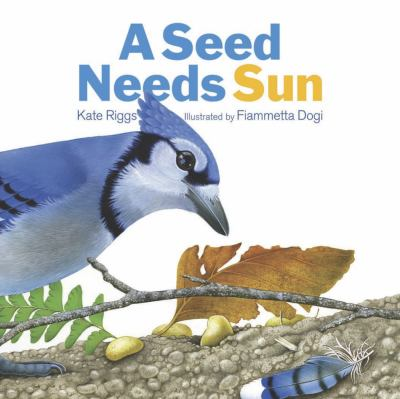 Book cover for A seed needs sun