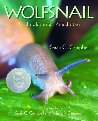 Wolfsnail : a backyard predator