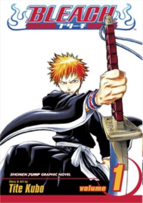 Bleach. Volume 1, Strawberry and the soul reapers