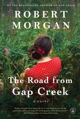 The road from Gap Creek a novel