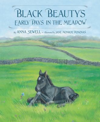 Black Beauty's Early Days in the Meadow.