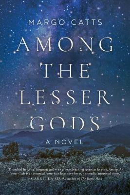 Among the lesser gods : a novel