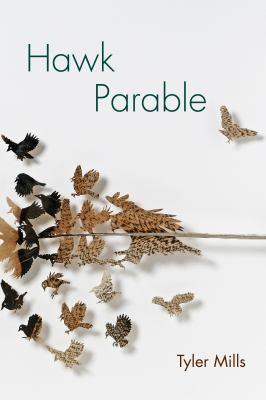 Hawk Parable