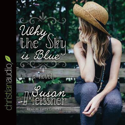 Why the sky is blue : a novel