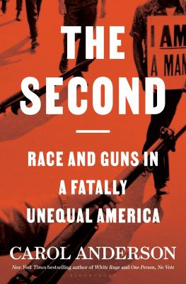 The second : race and guns in a fatally unequal America
