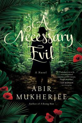 A necessary evil :  a novel
