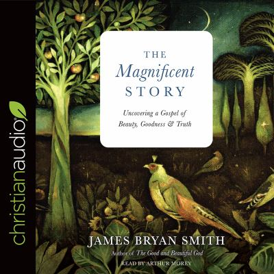 The magnificent story : uncovering a gospel of beauty, goodness, and truth