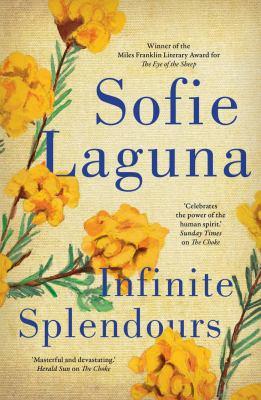 Book cover for Infinite Splendours