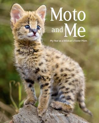 Moto and me : my year as a wildcat's foster mom
