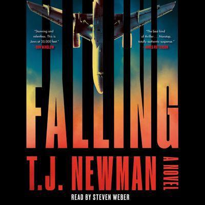 Falling a novel