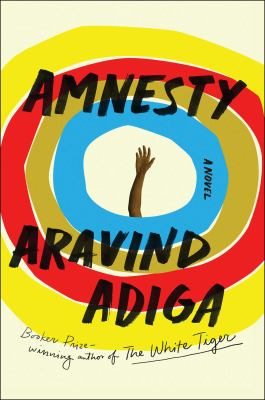Book cover for Amnesty